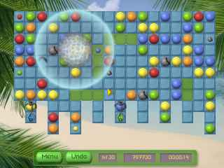 Tropical Puzzle Screen 2